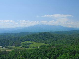 ON EAGLE'S WINGS- SPECTACULAR MOUNTAIN VIEWS! 2/2, Pigeon Forge