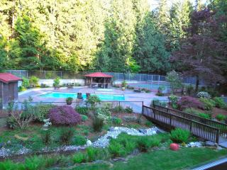 Executive Home in The Forest, Issaquah