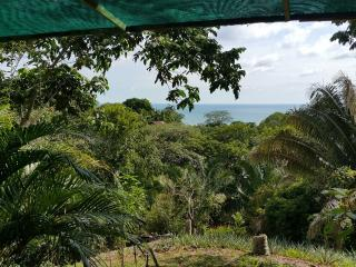 Cozy Rental Home With Ocean View!, Uvita