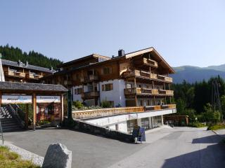 Panorama Chalet TOP 3A, Mittersill