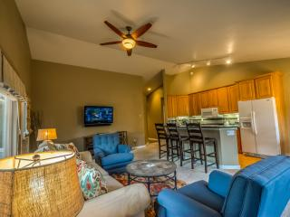 Fantastic Location and Private Hot Tub, Steamboat Springs