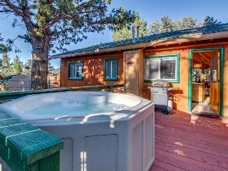 Cozy Big Bear cabin w/ private hot tub - bring the dogs!, Big Bear City