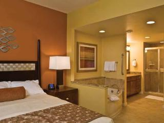 National Harbor-Close to DC-Attractions nearby, Oxon Hill