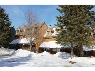 Northbrook Townhouse #3 - Two Bedroom Two Bathroom Bright and Nicely Decorated Minutes from Killington Ski Area