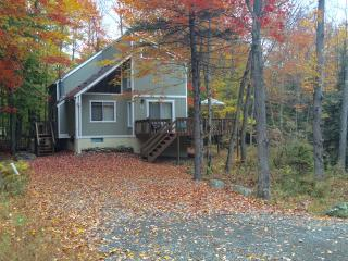 Peaceful Lake Retreat near Skiing~Fplc, Fpit, WiFi, Pocono Lake