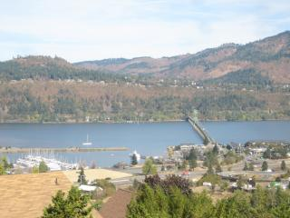 Gorgeous View Property overlooking the Gorge, Hood River