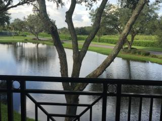 One Room Tampa  Saddlebrook  Resort  Condo, Wesley Chapel