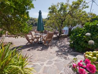 Holiday cottage with shared pool in Moya GC0001