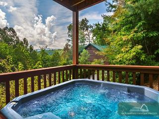 Americana  View Privacy King Beds Pool Access Hot Tub Wii  Free Nights, Gatlinburg