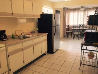 SMALL APARTMENT WITH ALL YOU NEED CENTRAL LOCATION, Ponce