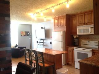 Modern Two Story Condo on the Creek - Hot Tub-Pool, Dillon