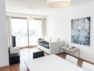 NEW 2 BEDR APT IN PALERMO! GREAT VIEWS, POOL, GYM, Buenos Aires