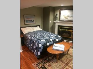 Fully Renovated Luxurious Basement, Mississauga
