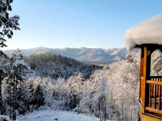 A Wilderness Hideaway - Delightful Rental Just 10 Minutes from Casino with Amazing View, Hot Tub, 2 Gas Fireplaces, and Upgraded Firepit, Bryson City