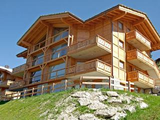 Suisse Apartment with Wide Windows and Magical Snow-Capped Mountain Views - Le Bonhomme, Nendaz