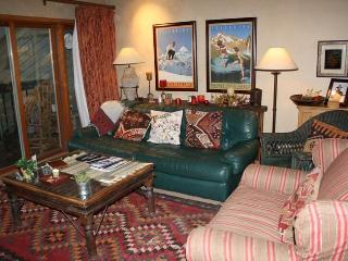 Lovely Town Of Telluride 2 Bedroom Condo - RA101