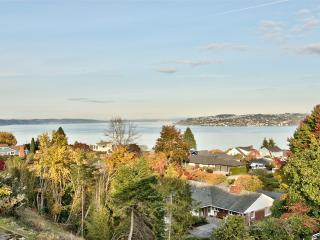 Custom Mother-In-Law / Expansive Sound Views, Tacoma