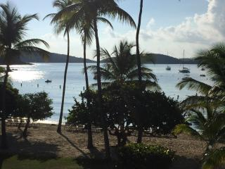 The Best Beach Front Condo -Right on Cowpet Bay!, St. Thomas