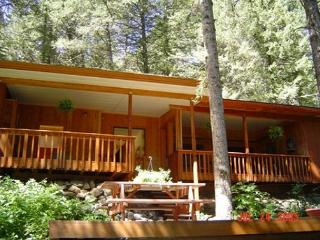 3-bedroom/3-bath cabin nestled in the Gallatin mountains, Gallatin Gateway