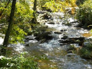 A River Runs Through It Location: Boone / Valle Crucis