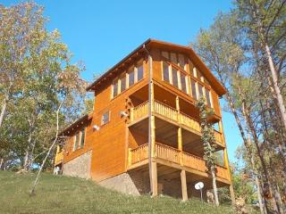 BLACK BEAR HIDE-OUT, Pigeon Forge