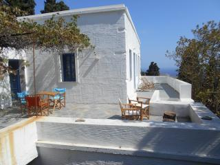 200y farmhouse in a natural garden, great sea view, Andros Town