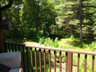 River front tree house for rent, Bancroft