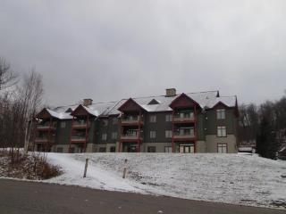 Lodges At Sunrise Village - Three bedroom Three bathroom Tastefully Decorated and Upgraded Townhouse Steps Away from the Sunrise Chairlift Health Club Privileges!, Killington