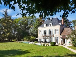 Historic Burgundy Chateau with En suite Bathrooms and Private Heated Pool - Chateau Chalon, Chatenoy-en-Bresse