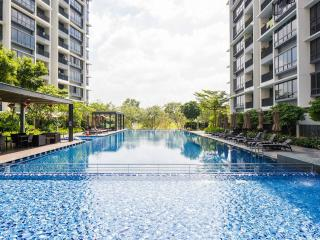 Entire 2 Bedroom near City and MRT, Singapour