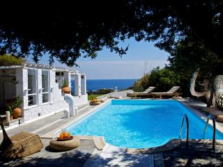 Peaceful Greek Island Villa with Pool and Sea Views - Villa Ambelas, Naoussa