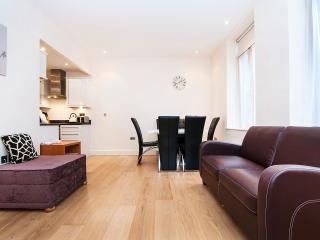 Ground Floor Entire Luxury Apartment Town Centre, Southampton