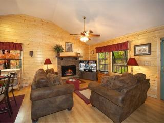 Living Room with Fireplace at Raccoon's Rest