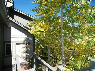 Anemone Townhome 3 bed 3 bath, Dillon