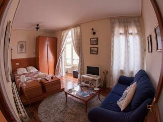 Big flat in the city center with wifi, Bilbao