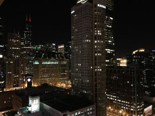 Luxury 1 Br High-Rise In Chicago River North