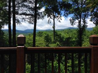 Private, Charming, Ellijay Cabin on 23 Acres