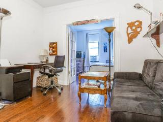 Sunny Spacious East Vil Entire Apt, New York City