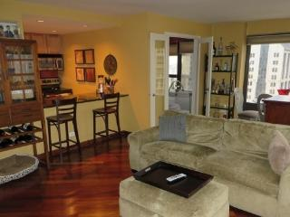 TWO BEDROOM Fully Furnished Condo, Chicago