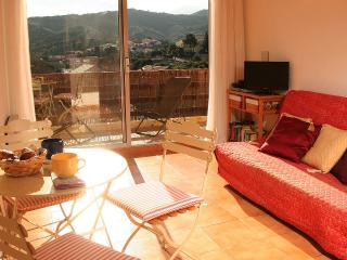 Collioure Flat, Terrace, Views, Walk to everything