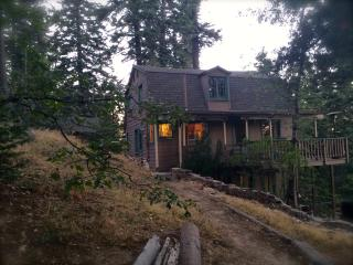 Charming 1928 Cabin- Near forest & gourmet dining, Twin Peaks