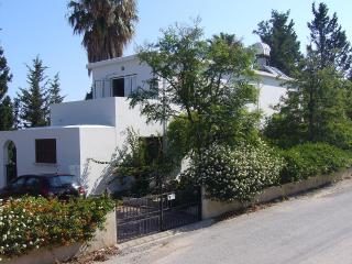 Mature House with Private Pool and Large Garden., Catalkoy