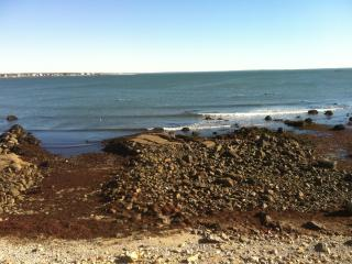 OCEANFRONT , On the Rocks- $175 daily, Fairhaven