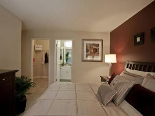 Beautiful 2 bedroom unit full pack with amenities, Sunnyvale