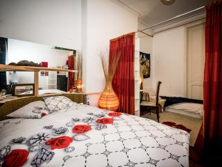 Beautiful Room in the Heart of Ixelles