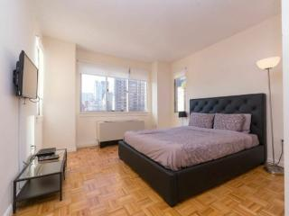 WONDERFUL 2 BEDROOM NEW YORK APARTMENT - 1, Long Island City