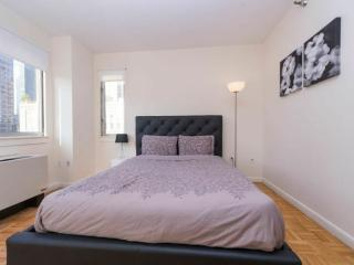 WONDERFUL 2 BEDROOM NEW YORK APARTMENT - 2, Long Island City