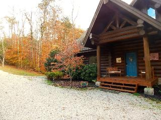 Heaven Sent includes a private covered dock and secluded cove with an amazing fire pit. Enjoy!, New Tazewell