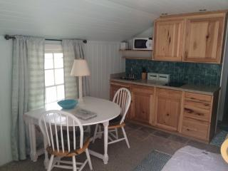 Pass-A-Grille on Beach Gulf Way 1 bedroom Sleeps 2, Tampa