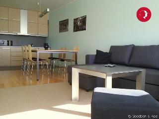 Spacious 1-Bedroom City Flat in The Centre of Tallinn